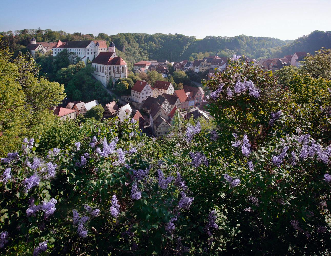 Blick auf Schloss Haigerloch mit Flieder im Vordergrund