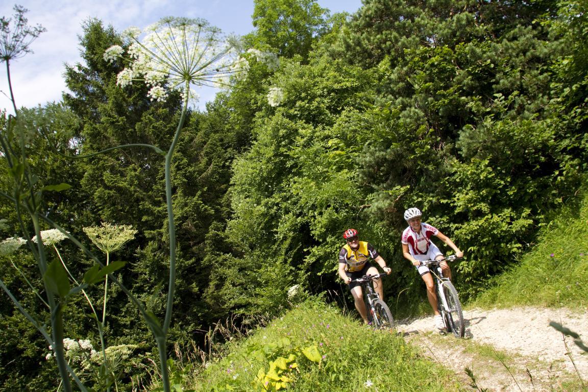 Mountainbiker auf der Zollernalb