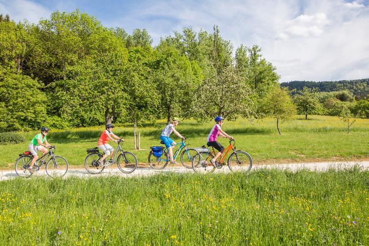 Radfahrer vor Obstwiesen