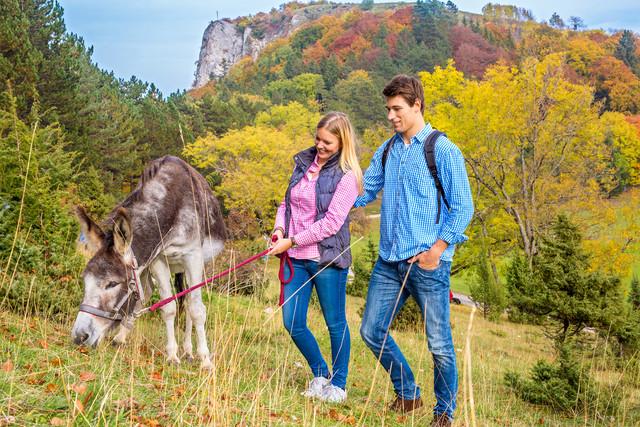 Wanderer mit Esel am Lochen