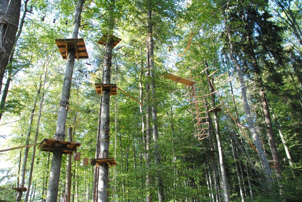 Kletterpark Waldheim ohne Personen