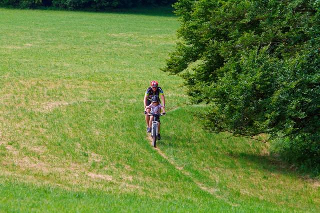 Mountainbiker auf Singletrail auf Wiese