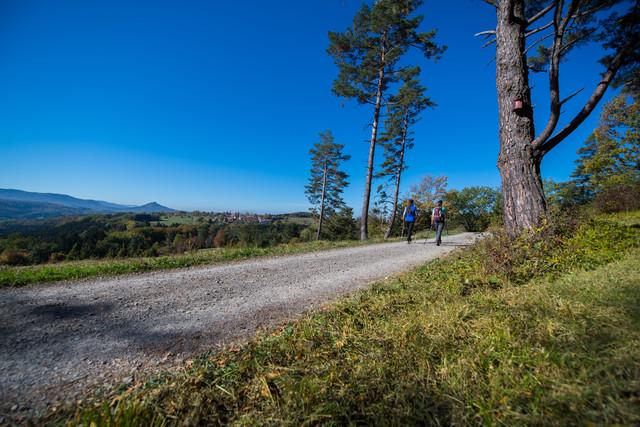 Wanderer auf der Heideweg Tour in Hechingen-Beuren