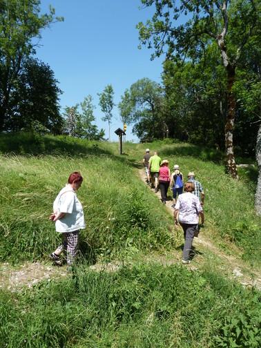 Geführte Wanderung Burgweg Oberhohenberg