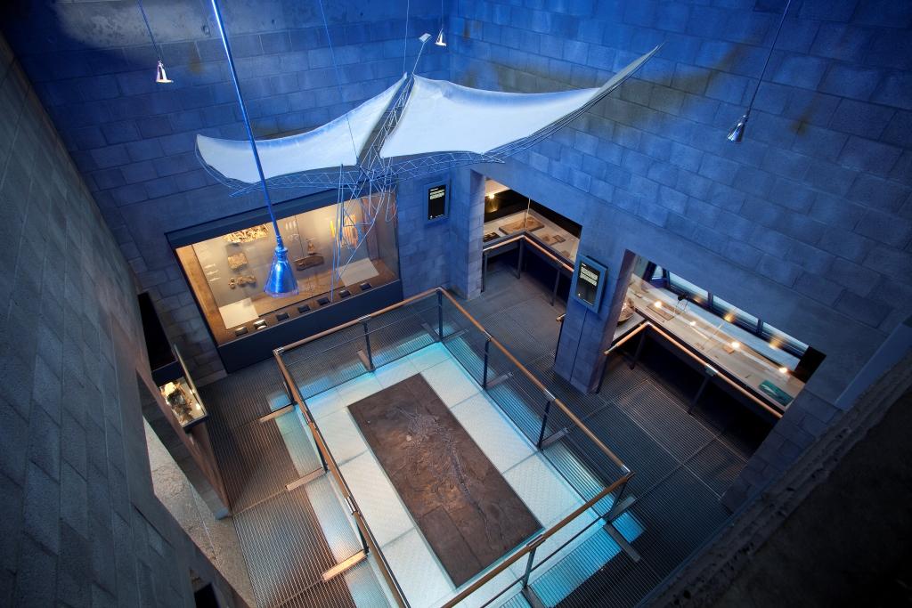Fossilienmuseum Dotternhausen