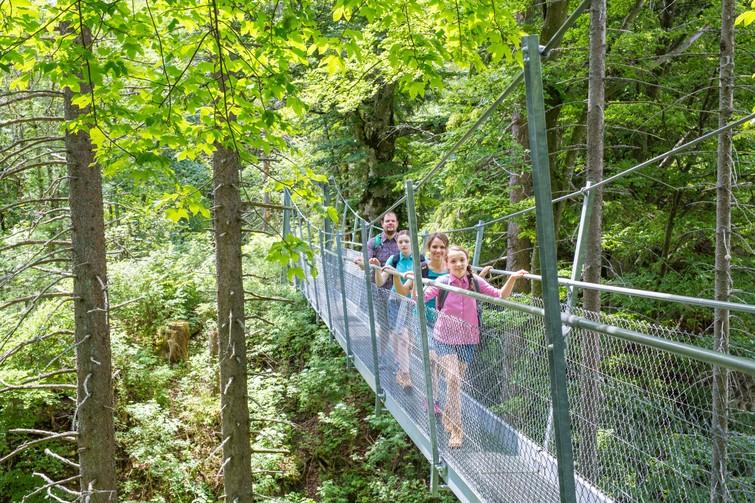 Hängebrücke auf dem Oberhohenberg