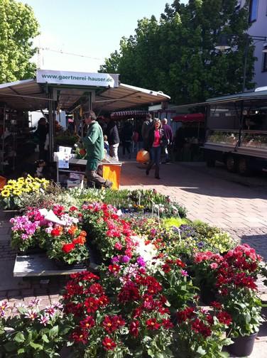 Wochenmarkt in Balingen