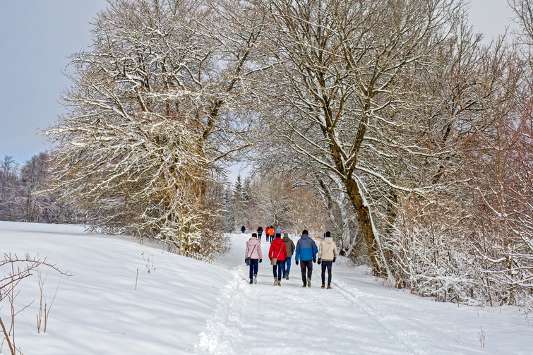Winterwandern in Albstadt