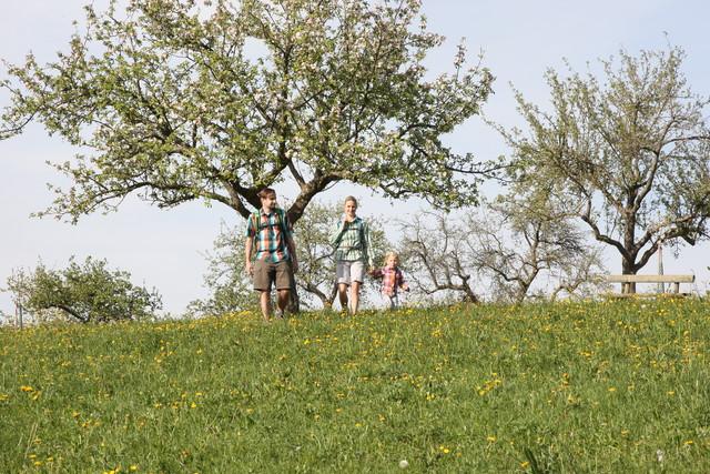 Familie wandert im Frühling bei Boll